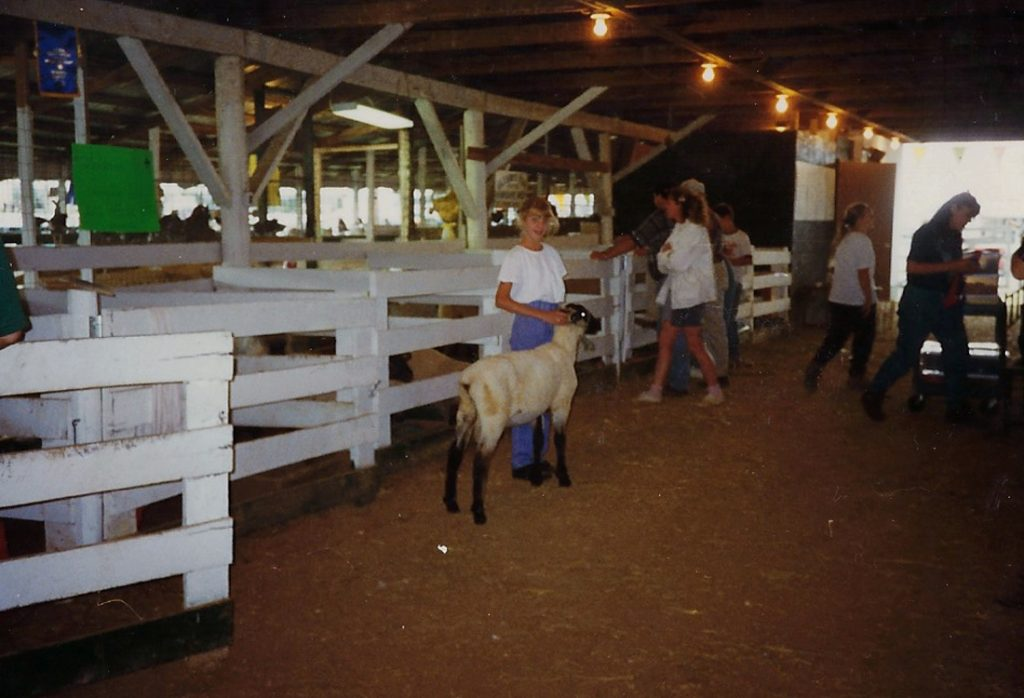 Showing a ram lamb at the Warren County Fair